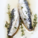 Sardines 'Grande Réserve' with olive oil