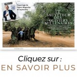 Reportage Figaro Magazine Huile Olive Olivier Millénaire