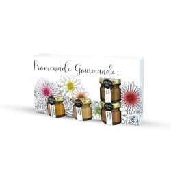 Gourmet Promenade Gift Set - 4 honey preparations